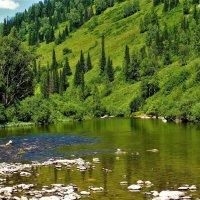 Плёс на горной реке :: Сергей Чиняев