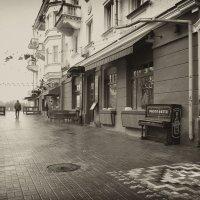 Вдоль по улице :: Роман Савоцкий