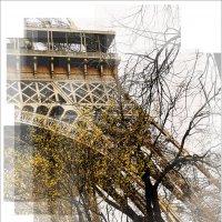 Париж :: Lina Belle