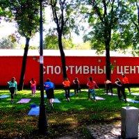 Москва. Парк им. Горького. :: Владимир Драгунский