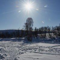 чудесный день,но еще зимний :: Николай Мальцев