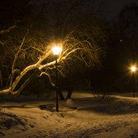 Вечерняя набережная :: Дима Пискунов