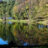 Озеро в парке. :: Антонина Гугаева