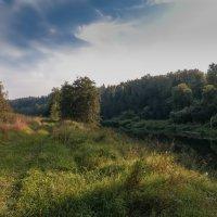 Река Лопасня 2 :: Андрей Бондаренко