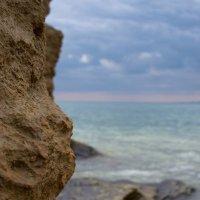 Весна на Черном море! :: Mishka-D2008 ( Мишкина )