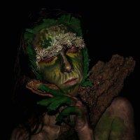 Лесной житель :: Виктория Андреева