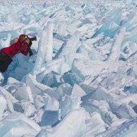 Коллега во льдах :: Ирина Бруй