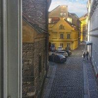 Вид из окна :: Татьяна Панчешная