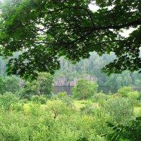 Монастырский сад :: Елена Павлова (Смолова)