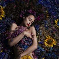Цветочные сны :: Лилия Будаева