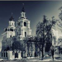 г. Курск, Сергиево-Казанский собор зимой :: Ирина Falcone
