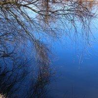 склоняясь над рекою :: оксана