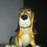 Задумчивая собака :: татьяна