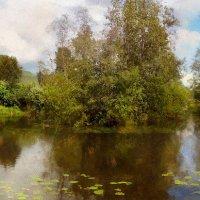 Заросший пруд в Апраксине :: Иван Миронов