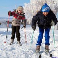 Совсем недавно бегали на лыжах.. :: Андрей Заломленков