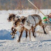 Быстрей, еще быстрей! :: Георгий Кулаковский