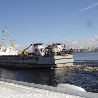 Путешествие из Санкт-Петербурга в Петродворец (серия) :: Андрей Кротов