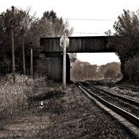 #Железная дорога# :: Eva Dark13