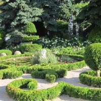 В летнем парке :: Дмитрий Никитин