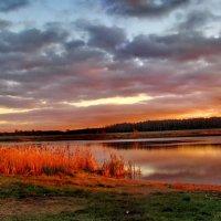 Красиво падал свет заката :: Лара Симонова