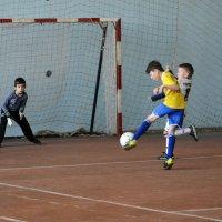 Точный удар по воротам... :: Дмитрий Петренко