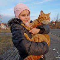 Любимый кот! :: Андрей Буховецкий