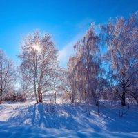 Голубые тени февраля :: Анатолий Иргл