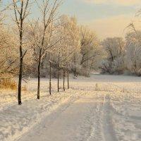 Отблески зимы :: Владимир Гилясев