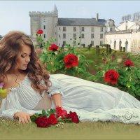 Роза (пре)красная моя! :: Michelen