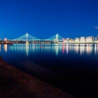 Вантовый мост :: Frol Polevoy