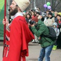 Он нашел удачный  ракурс! :: Виталий Селиванов