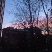 Вечер из окна. :: Mary Коллар