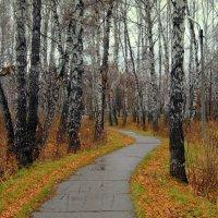 Путешествие в осень . :: Мила Бовкун
