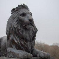 Символ города :: Alena Cyargeenka