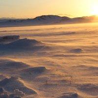 Снег во время заката :: Ольга Иргит