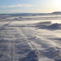 Зимняя дорога в степи :: Ольга Иргит