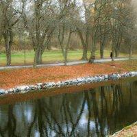 Возвращаясь в осень... :: liudmila drake