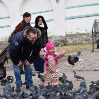 Гули полетели! :: Татьяна Помогалова