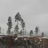 Финский пейзаж мимоходом.. :: Tatiana Markova