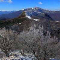 На склонах Северного Демерджи :: Михаил Баевский