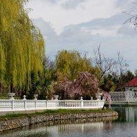 Весна в парке :: Виолетта