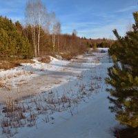 Последний снег. :: Алексей Соловьев