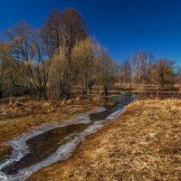 Весна наступает 2 :: Андрей Дворников