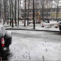 В Санкт-Петербурге снова снег!!! :: Вера