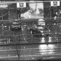 опять дождь... :: galina bronnikova