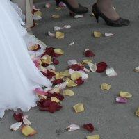 свадебный танец на лепестках :: Наталья Золотых-Сибирская