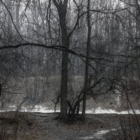 а снег идёт :: Геннадий Свистов