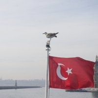 Стамбул :: İsmail Arda arda