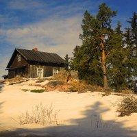 .домик в деревне... :: Ольга Cоломатина