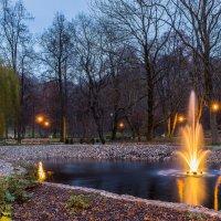 Вечер в парке :: Yury Novikov
